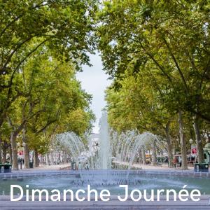 Programme dimanche journée, festival de musiques et danses swing, Swinging Montpellier